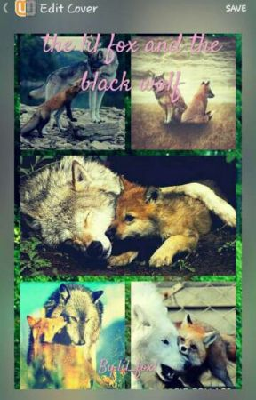 the Lil fox and the black wolf by lil_fox1
