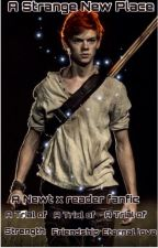 A Strange New Place- A Newt X Reader fanfiction {1} by chaosmxgic