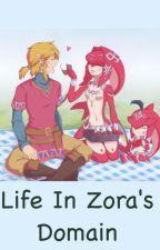 Life in Zora's Domain by Andremoi_88