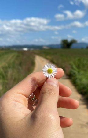 Walk You Home ; 𝗛𝗥𝗝 & 𝗡𝗬𝗭 by ningbbao