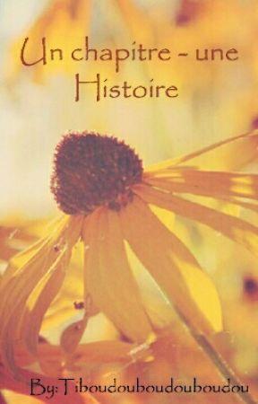 Un chapitre - Une histoire ♥ by Tiboudouboudouboudou