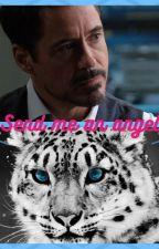 Send me an angel (Tony Stark x Feline!Reader) by AlucardVlad01