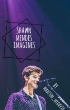 Shawn Mendes Imagines 2 by madison_mcdavid