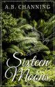 Sixteen Moons (Shelha: Book III) ✔ by