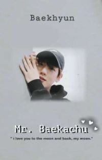 Mr.Baekachu cover
