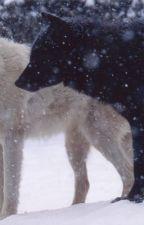 Ulven for mig by RandiLarsen4