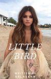 Little Bird |•| Sammy Wilk [2]  cover