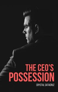 The CEO'S Possession cover