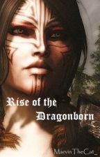 Rise of the Dragonborn by MarvinTheCat_