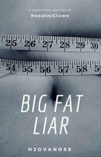 Big Fat Liar  cover
