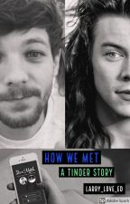 How We Met: A Tinder Story (Larry Stylinson)✅ by larry_love_ED