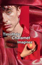 Timothée Chalamet imagines by malibunightsx