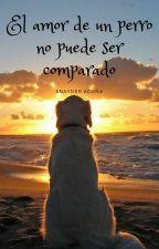 El amor de un perro no puede ser comparado by Snayder_The_history