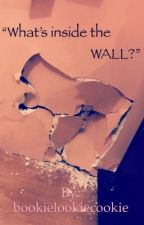 """""""What's Inside the Wall?"""" by _no_1_else_"""