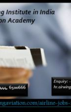 Top Airline Ticketing Institute in India Airwing Aviation Academy by airwingaviation