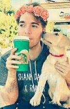 I Love You   Shane Dawson x Reader by thatCutesyPie