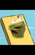 Kermit the Frog X Plank (smut) by kaykay2020kayla