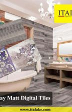 Fostal Gray Matt Digital Wall Tiles - Italake Ceramic Pvt Ltd by italake