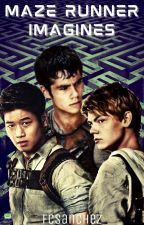 Maze Runner Imagines [DISCONTINUED] by Fcsanchez