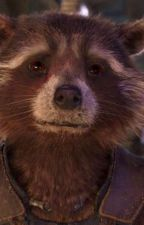 rocket raccoon imagines by geeky-fangirl