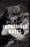 Impossible Mates  cover