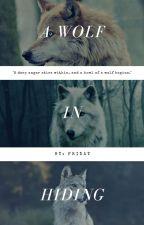 A wolf in hiding | Teen wolf/Twilight by Froggie26119