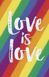 The LGBTQ+ Guide (includes romantic orientations+) cover