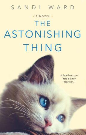 The Astonishing Thing by sandiwardbooks