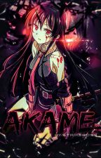 Akame Ga Kill x Male Reader by ChristianRodriguez85