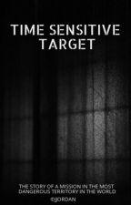 Time Sensitive Target by Paige0Turner