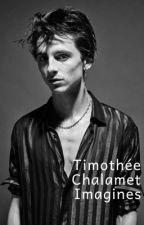 Timothée Chalamet Imagines by Kissing5SOS