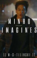 Minho Imagines (Minho X Reader) by m-s-tilinski