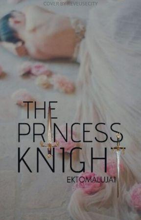 The Princess Knight by Ektomaluja1