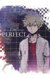 PERFECT  Katsuki Bakugo X Reader cover