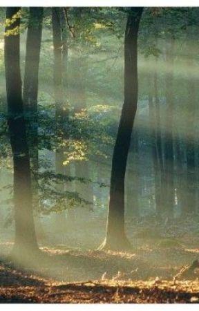Zonsondergang by deeplyblue