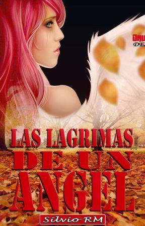 Las Lágrimas de un Ángel by SilvioRM