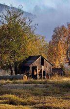 Cabana din padure by -Wall-