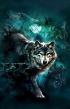 كعِمق عيونٍ ذهبيّة لذِئبٍ رَمادِيّ (والِديّ) by v1v2v3v4v5v6v7