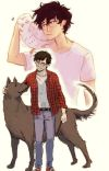 Harry Potter, The Bronze Boy cover