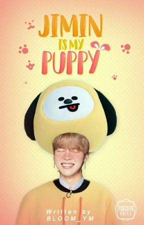 Jimin is my Puppy »ʏм ; 윤민 by BLOOM_YM