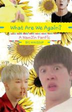 What Are We Again? (NamJin FanFic) by Anonymous_Ryan