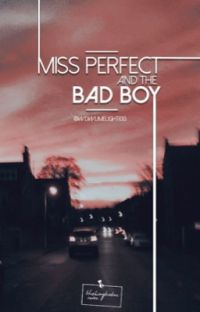 Miss Perfect and The Bad Boy cover