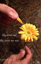 she loves me, she loves me not by ApizzaforFlaritza