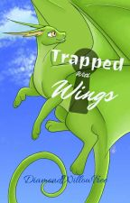 Trapped With Wings by DiamondWillowTree