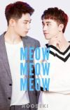 Meow Meow Meow ( Zawgyi & Unicode ) cover