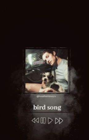 BIRD SONG   ✬   graphics portfolio + shop by ccaged