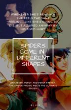 Spiders come in different Shapes by cowgirl30289