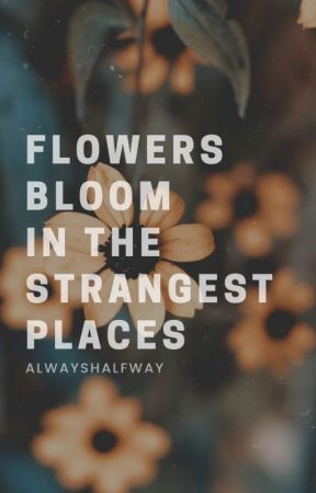 flowers bloom in the strangest places. by alwayshalfway