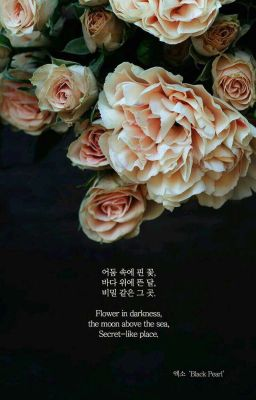 MultiCouple • Nghìn đóa hồng hoa