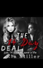 The 14 Day Deal by dreamingofvenice